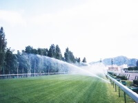 Sprinkling of water using an automatic sprinkler